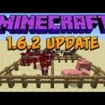 Serwery Minecraft 1.6.2